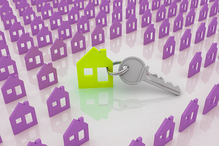Looking to rent a property?